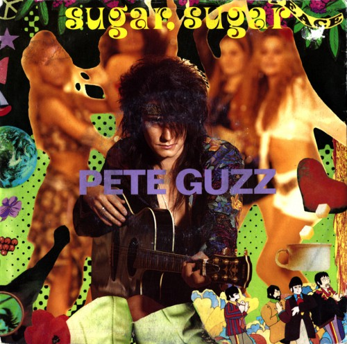 - - - covers - Pete Guzz - Sugar Sugar